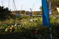 Club Nautique du Rohu - Our vegetable garden